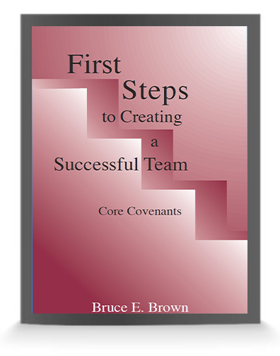 first-steps-to-building-successful-teams
